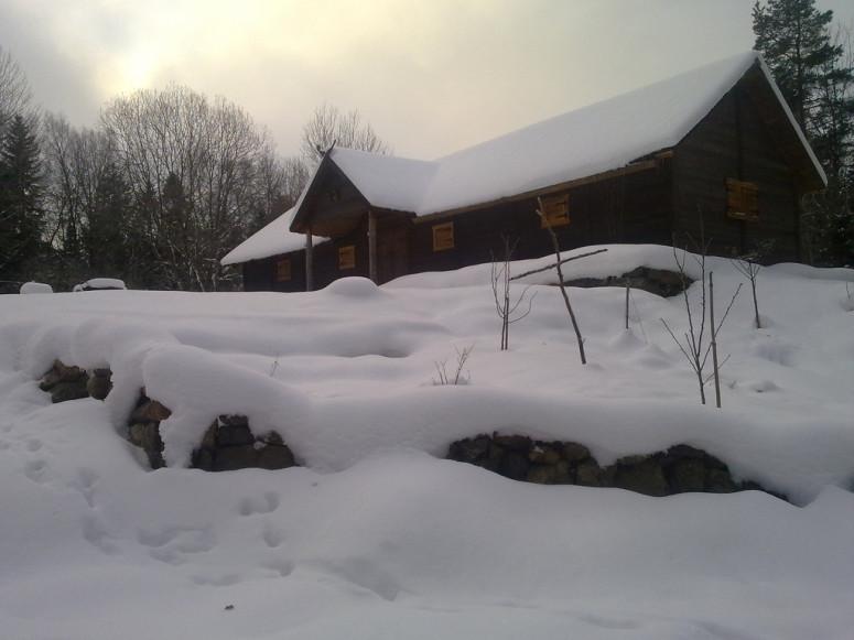 Wet snow. Photo by nilsbryntesson