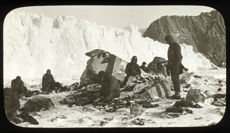 medical-hypothermia-05-Ernest Shackleton-Elephant-Island