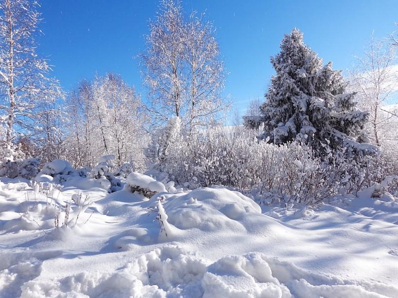 winter-881844_960_720